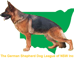 The German Shepherd Dog League of NSW Inc – German Shepherd